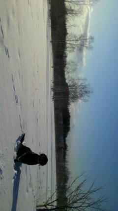 雪原とウサギの足跡